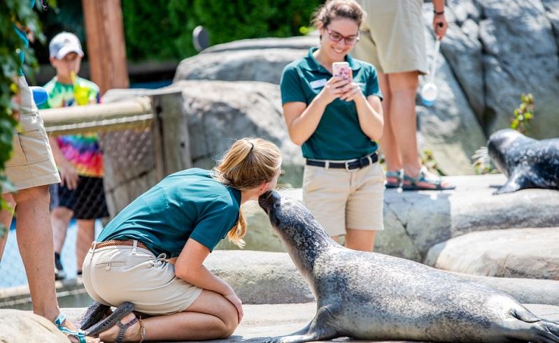 Und noch eine tolle Idee für ein Praktikum für Schüler. Als Tierpfleger im Zoo oder auf einer Ranch. ( Foto: Shutterstock- Joe Hendrickson_)